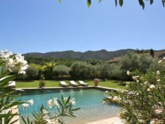 immobilier unmasenprovence