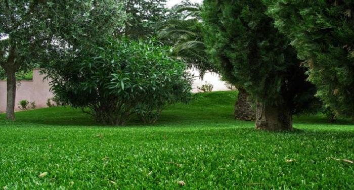 Le gazon synthétique, idéal pour illuminer son jardin